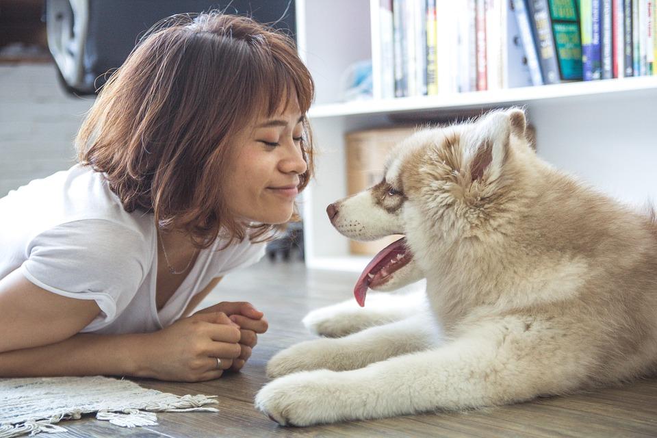 Comment créer un lien fort avec son chien ? Mode d'emploi !