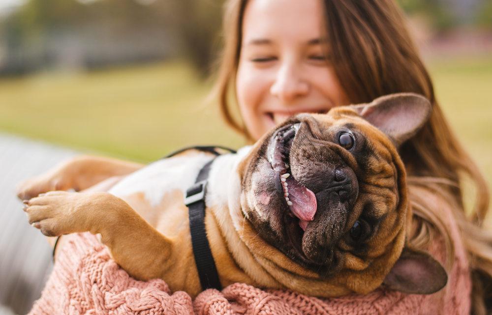 Comment garder votre chien heureux et en bonne santé