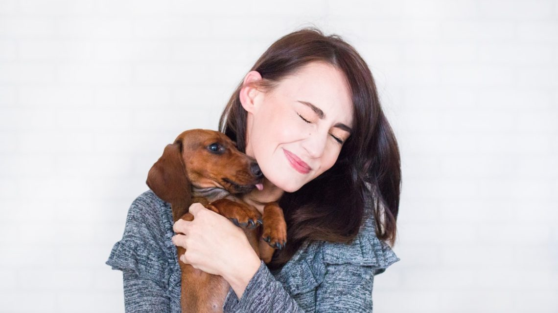Conseils pratiques pour l'adoption d'un chien