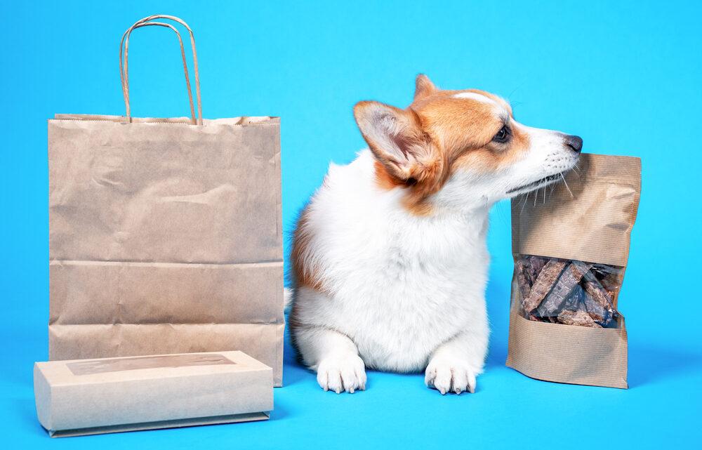Les critères à considérer avant d'acheter une box naturelle pour chien